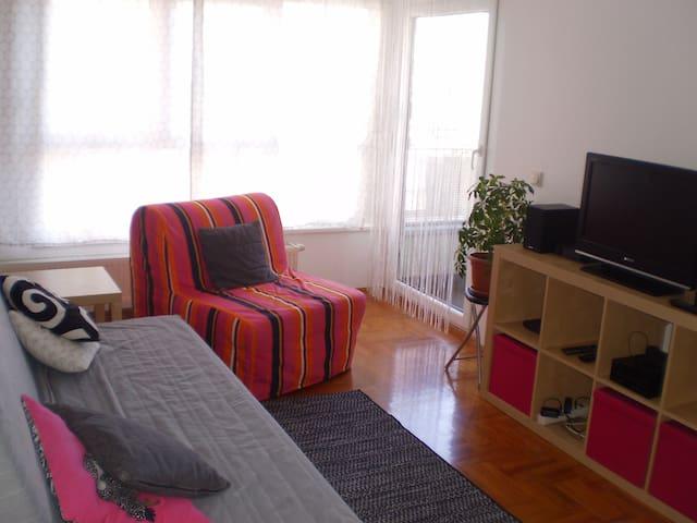 Pleasant apartment near Arena