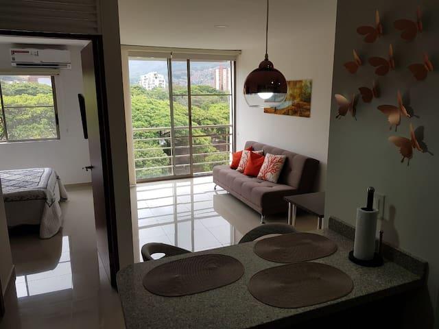 Cozy Apartment in/Apartamento Acogedor en la Cali