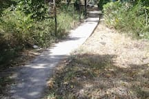 walking trail to the huts