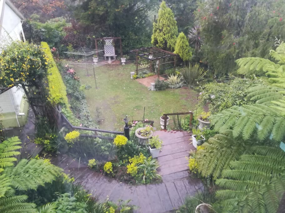 Part of our very large garden