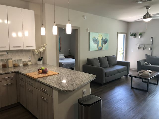 Private Room; Modern Luxury Savannah Apartment