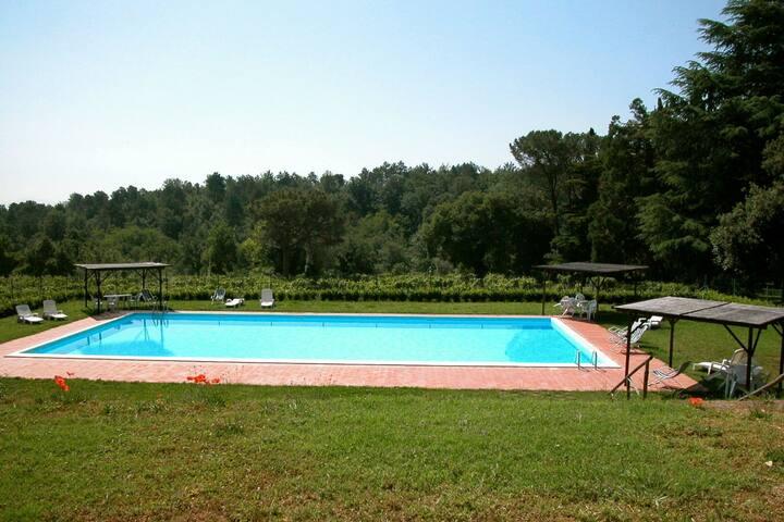 Idyllic Farmhouse in Sarteano Tuscany with Shared Pool