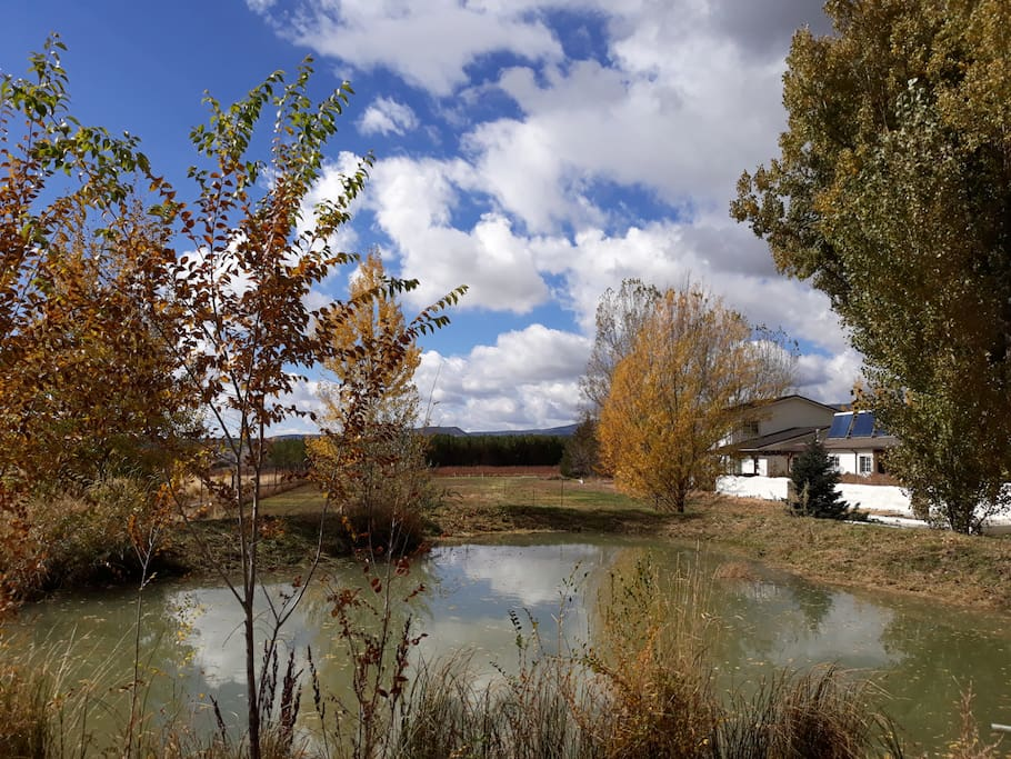 Agape Farm and Retreat Colorado Farm stay, bed and breakfast, vineyard, romantic getaway and event venue - The pond #1