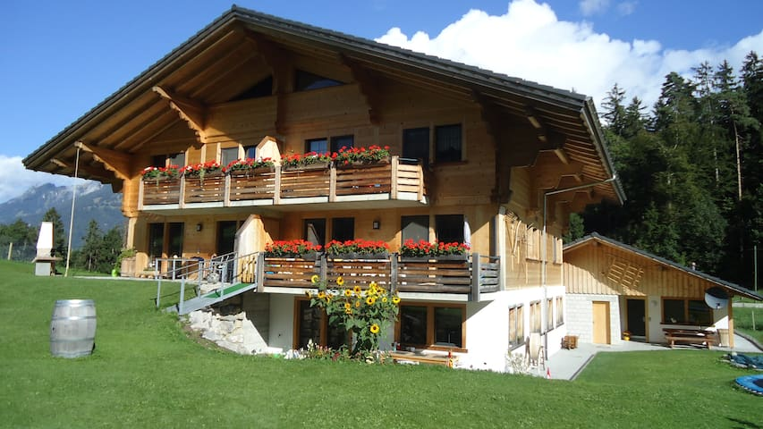 Ruhiges Apartment in der Natur - Oey-Diemtigen - Appartement