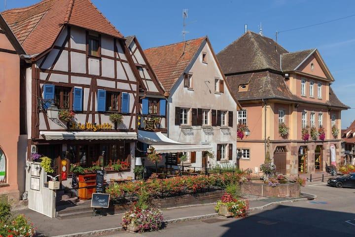 Appartement Charmant au coeur de l'Alsace