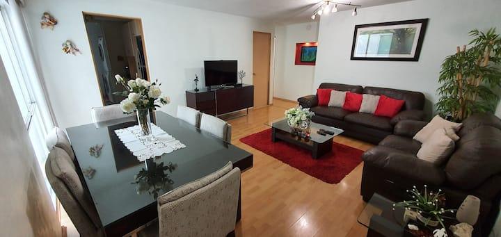 Spacious Apartment near Reforma