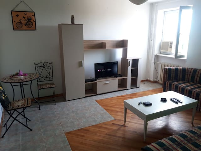 Bright apartment in city center next to park