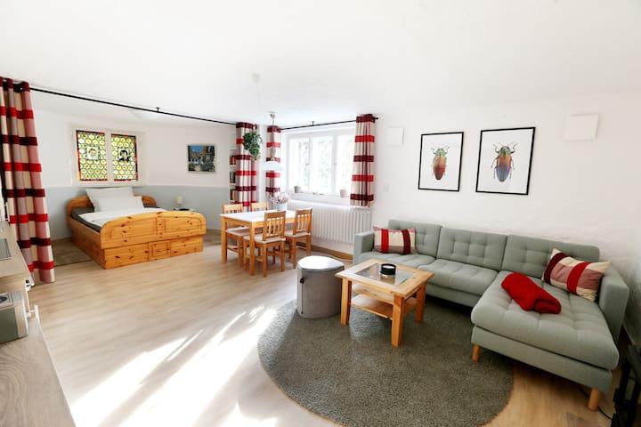 Liebevoll eingerichtetes Apartment im Haus Erika