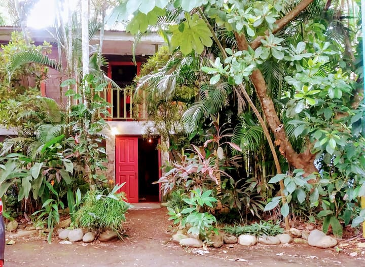 Privated room & shared bath. Casajungla Hostel.