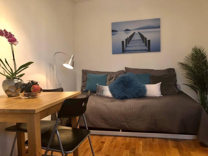 Centrally located studio in Majorstuen area