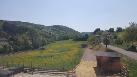Højtider i Avarella Ponyhof