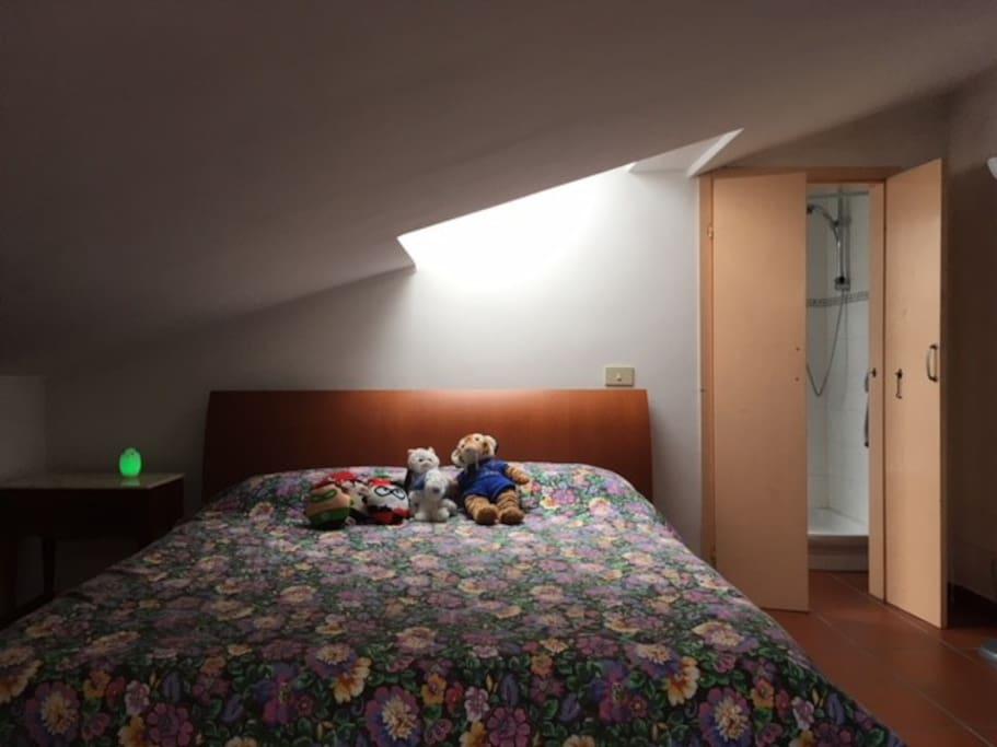 Camera da letto con Bagno privato, doccia , lavatrice.  Tv  aria condizionata .