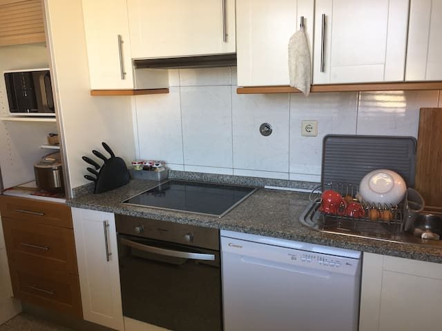 kitchen with stoves, oven, microwave,dishwasher , fridge