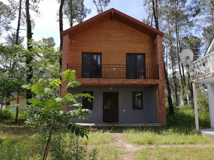 House at Magnetic-Sand Beach in Shekvetili/Georgia