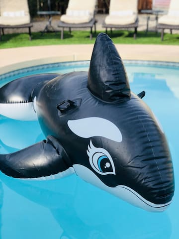 Whale included