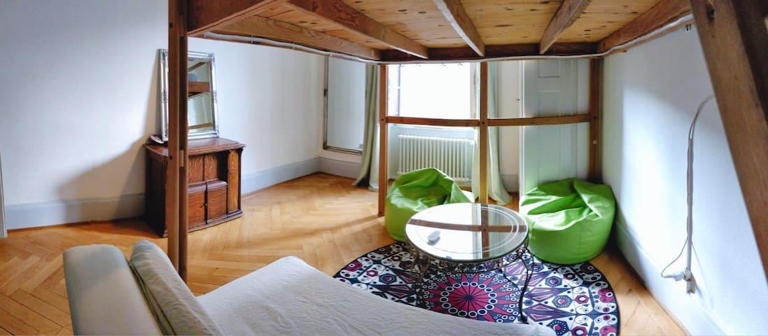 ✦Long séjour 65%✦Réduction Chambre Lausanne Centre