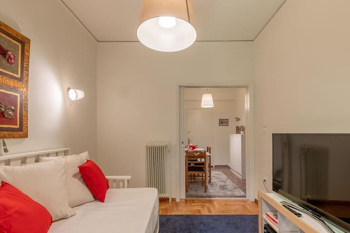 Elegant flat at Acropolis