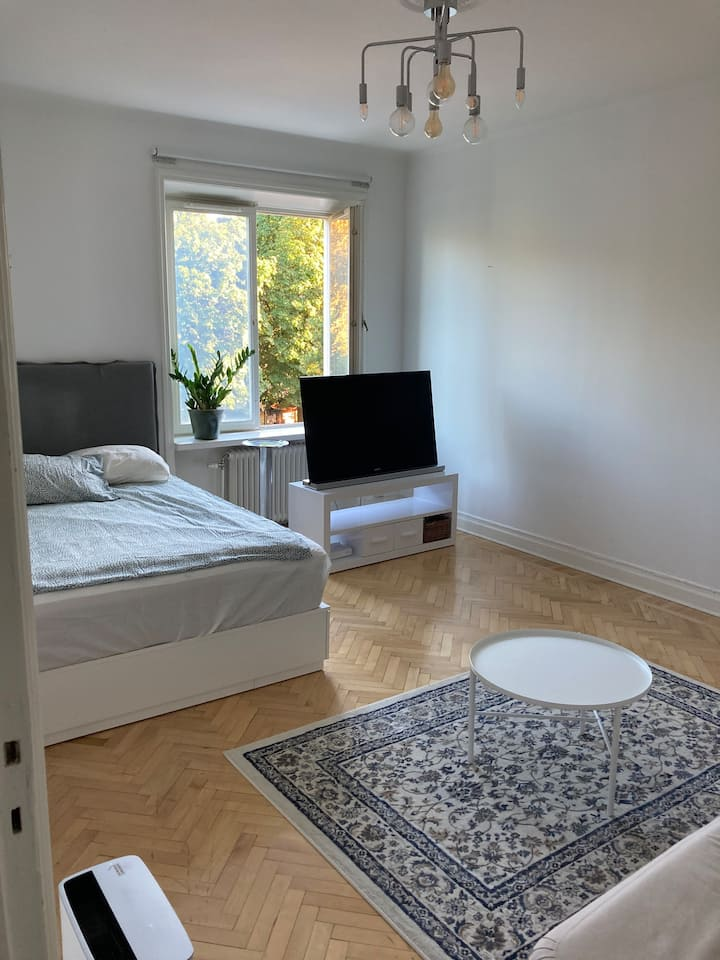 Clean apartment in Södermalm, Stockholm