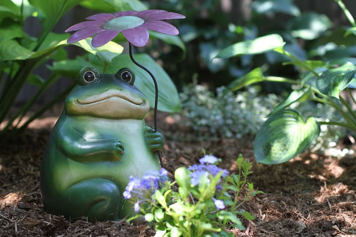 Relax and recharge in our private garden with Oscar the frog... ribbit... ribbit