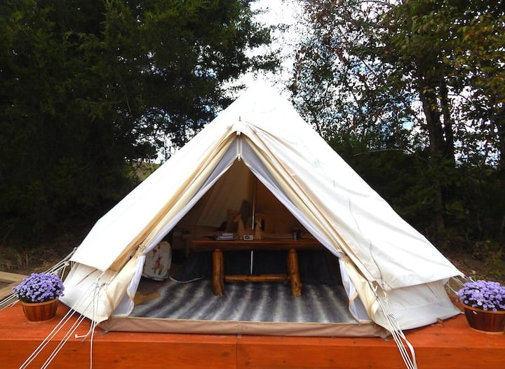 The LlamaLlodge Glamping Tent on a Llama Farm
