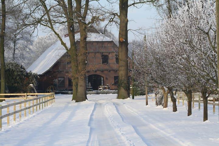 Landhauswohnung mit schönem Garten! - Cappeln (Oldenburg) - Lyxvåning