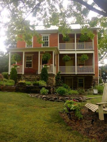 The Enchanting Lavender House