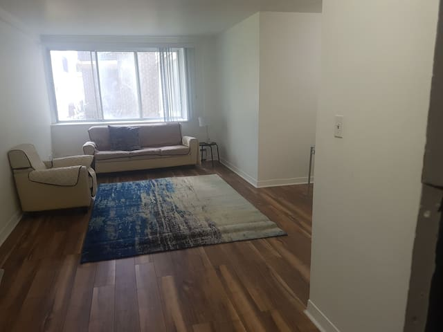A big chill 3.5 apartment with one bedroom