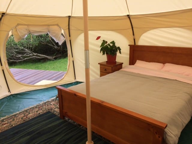 Lotus Belle tent- experience nature in comfort!