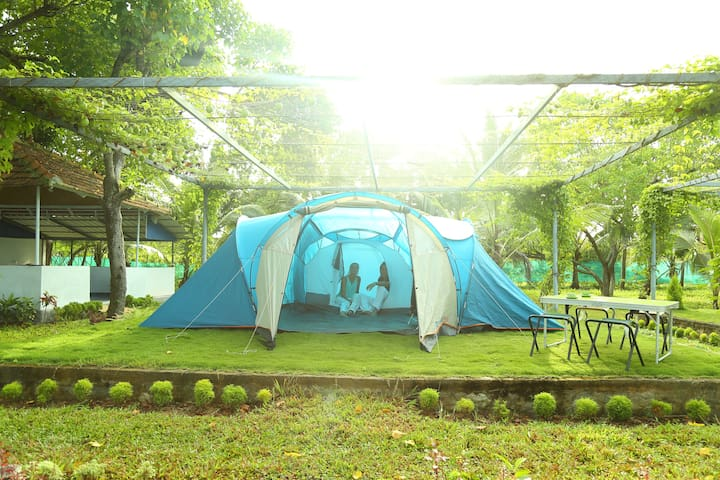 Munroe eco camp -No frill campsite