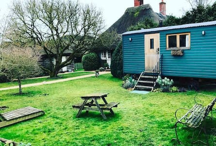 Cosy Shepherds Hut - Great Durnford - Bed & Breakfast