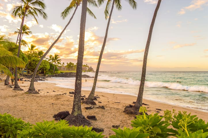 Stay as a local and enjoy the beach with Aloha.