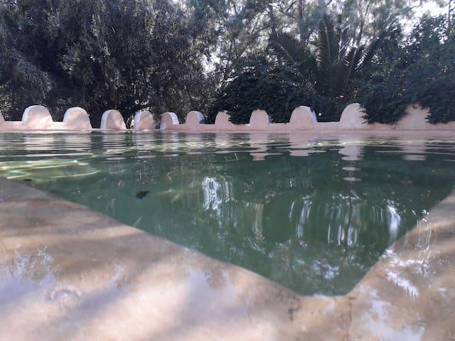 Maison d'hôtes Dar Tazarka