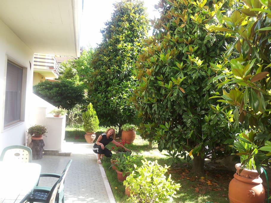 Porzione giardino lato ingresso .