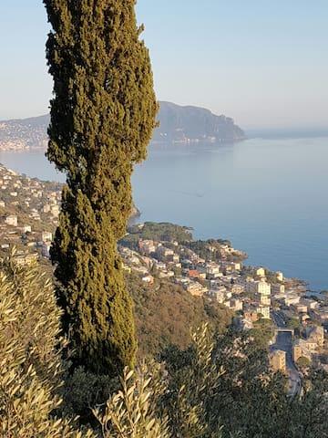 nella natura a 2 passi dal mare - Genova