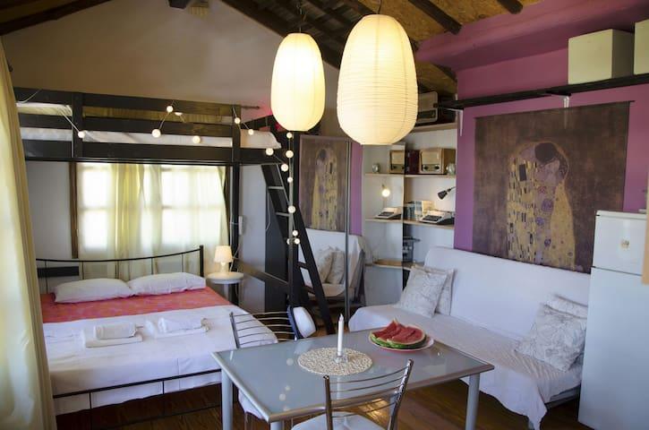 Penthouse sunny apartment