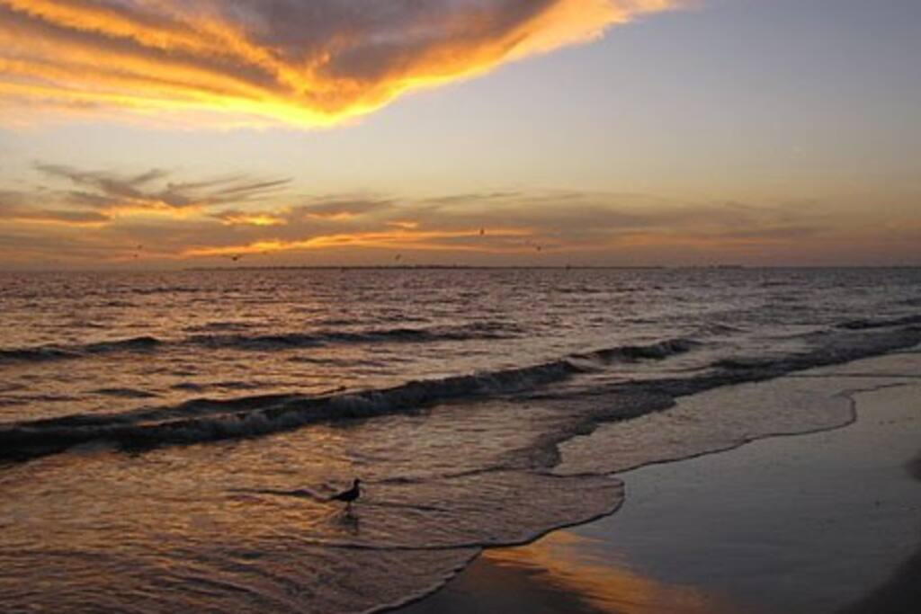 Bed Breakfast Fort Myers Beach