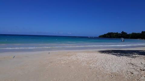 Ocho Rios Apt with Private Beach Access