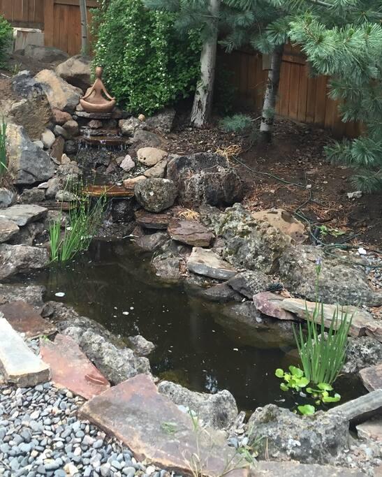 Peaceful courtyard pond w/ waterfall
