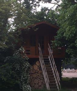 Slapen tussen de boomtoppen in hartje Betuwe - Beesd