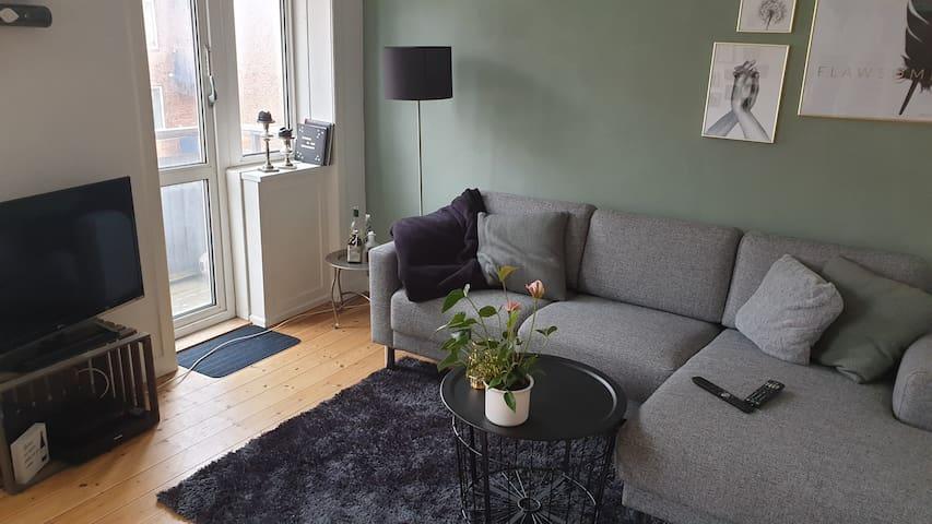 2-værelses lejlighed med hurtig adgang til centrum