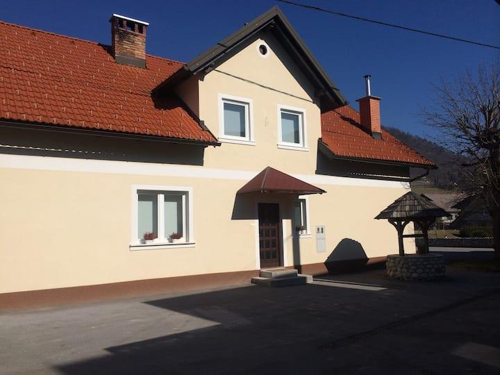 Spacious traditional Slovenian house