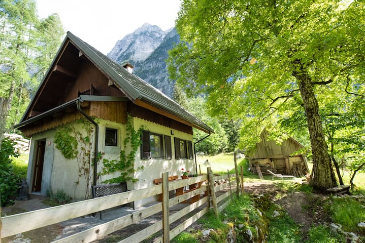 Private Alpine house Antonia with mountain views