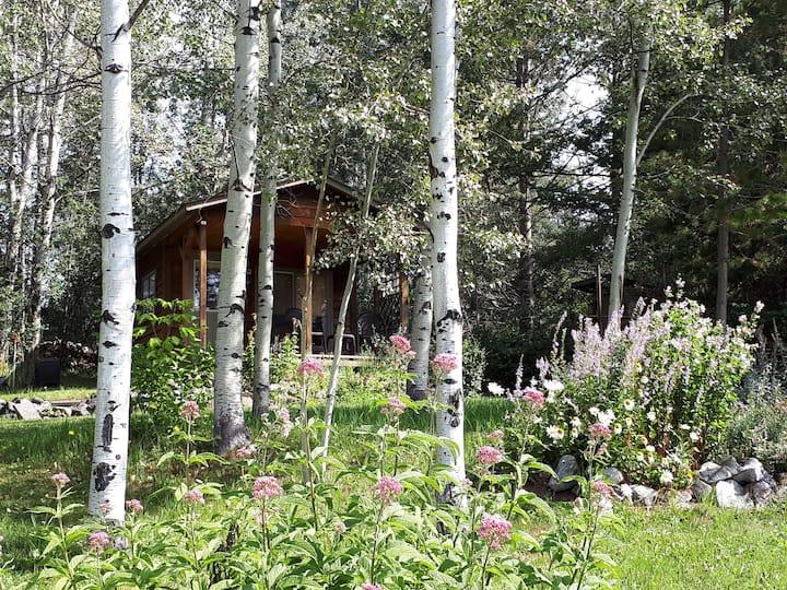 Peaceful Lakeside Rustic Cabin, pet friendly