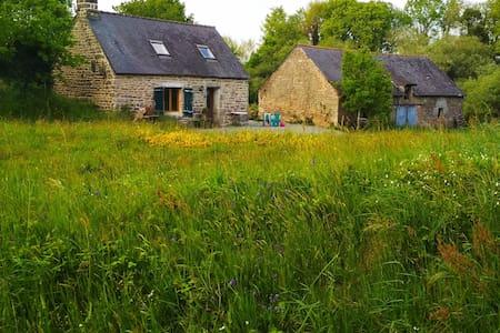 Un petit coin de calme au centre de la Bretagne