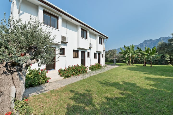 Duplex Villa Type Bungalow