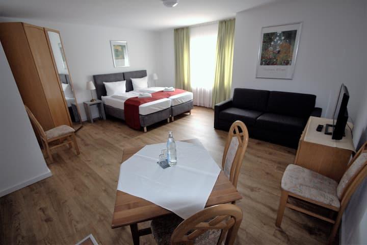 Studio-Appartement im Hotel Leo