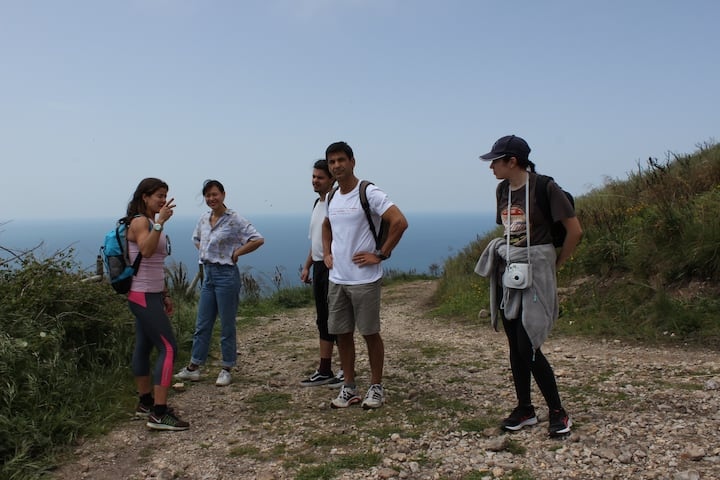 Group walk in Sintra forest