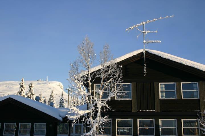 Sentralt beliggende leilighet på Skeikampen