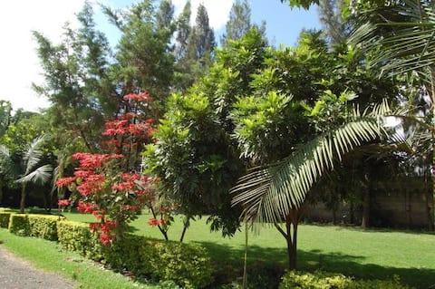 Arusha dream home