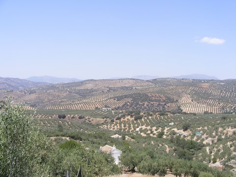 Rural Cortijo, stunning views, pool, WIFI, 5 acres